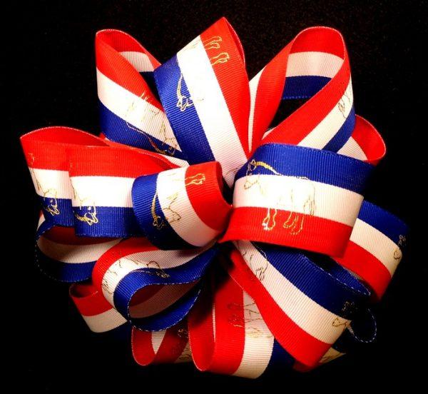 Democratic ribbon