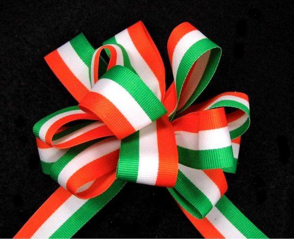 Irish Flag Ribbon