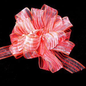 striped sheer ribbon