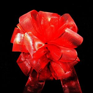 Red Sheer Ribbon