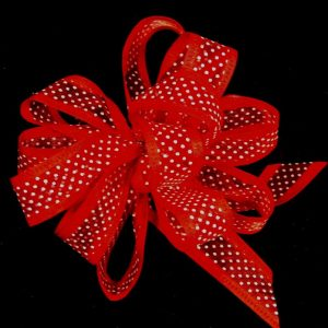sheer dot ribbon