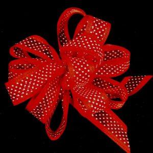 sheer dot ribbon