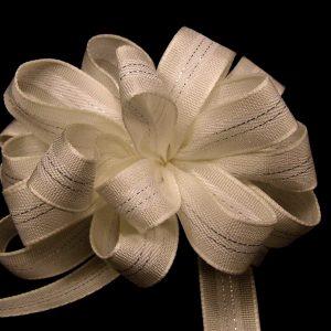 elegant ribbon