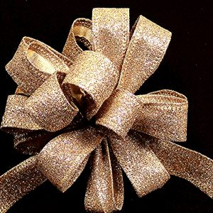 Wired Glitter Ribbon