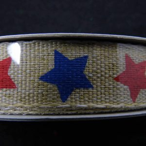 thin patriotic ribbon