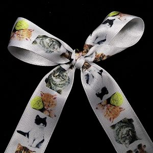 cat ribbon