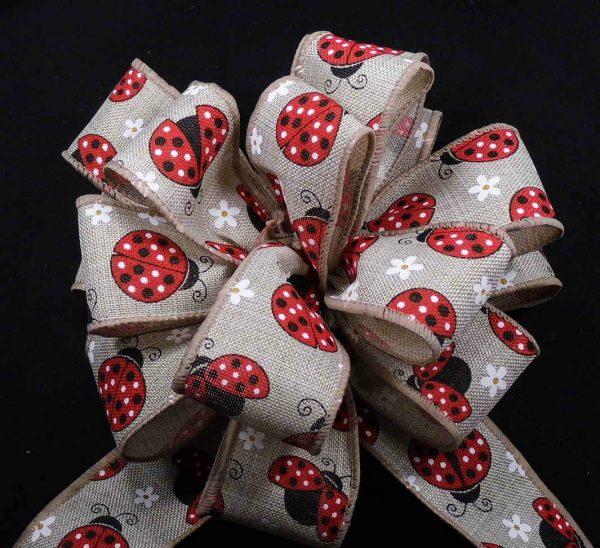 ladybug ribbon