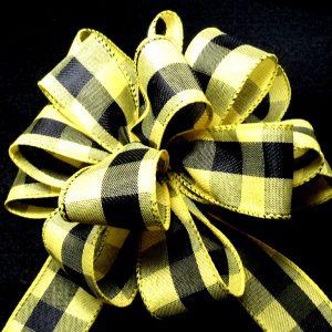 Bumblebee check ribbon